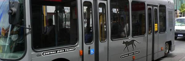 キャットバス