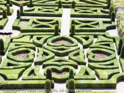 優しい愛の庭園